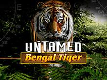 Игровой автомат на рубли Дикий Бенгальский Тигр